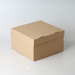 Corrugated Box Persegi M